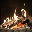 Fire in fireplace — Stock Photo #41867975