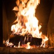 Fire in fireplace — Stock Photo #41868073
