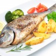 Sea bream fish — Stockfoto #41868429