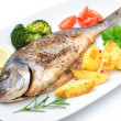 Sea Bream Fisch — Stockfoto #41868429