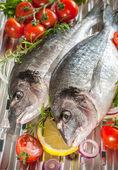 Sea bream fish  on a grill — Stock Photo