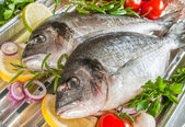 Sea bream fish  on a grill — Stock Photo