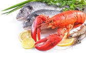 Sea food on white background — Stock Photo