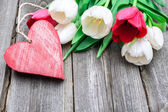 Fresh tulips with a red heart — Stock Photo