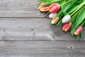 Fresh tulips on wooden background — Stock fotografie