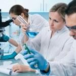 Laboratory — Stock Photo #6859069