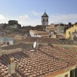Stock Photo: Capoliveri roofs, Elba