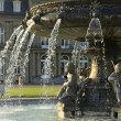 Fountain and Castle, Stuttgart — Stock Photo #18876755