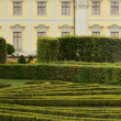 Hedgerow at castle, Ludwigsburg — Stock Photo #18877207