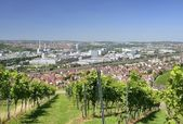 Vineyards and industrial settlements, Stuttgart — Stock Photo