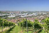Vineyards and industrial settlements, Stuttgart — Stock Photo