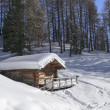 Snowy hut in woods, Costalunga pass — Stock Photo