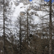 Stock Photo: Winter in woods, SPellegrino pass
