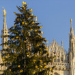 Stock Photo: Christmas Tree and Madunina, Milan