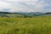 Groene weiden in curone vallei, Italië — Stockfoto
