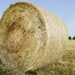 Large bale of straw — Stock Photo