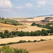 Countryside landscape in Tuscany near Siena in Italy — Stock Photo