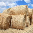 Pile of hay bales — Stock Photo