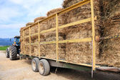 Tractor loaded with hay — Stock Photo