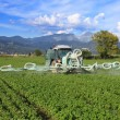 Stock Photo: Agriculture, tractor and pesticide