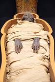 Egyptian mummy — Stock Photo