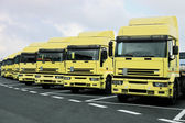 Many trucks — Stock Photo