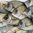 Stock Photo: Giltheads bream fish at market