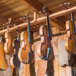 New and old violins in workshop — Stock Photo