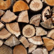 Stacked wooden logs — Stock Photo