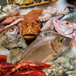 Fish and seafood - Stock Photo
