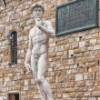 Stock Photo: David of Michelangelo in Florence, Italy