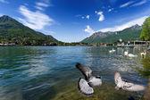 Como lake from Lecco, Italy. — Stock Photo