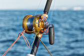 Fishing reel and pole — Stock Photo