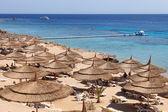 Red sea beach resort — Stock Photo