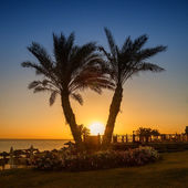 Sunrise on the Red sea, Marsa Alam, Egypt — Stock Photo