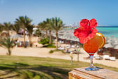 Hibiscus and cocktail against tropical sea resort beach — Foto Stock