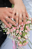 Wedding couple showing rings — Stock Photo