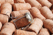 Cork from champagne — 图库照片