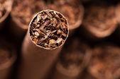 Cigarro marrom — Foto Stock