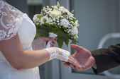 The groom takes the bride's hand — Stock Photo