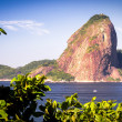 Sugarloaf Mountain — Stockfoto #30021473