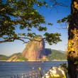 Sugarloaf Mountain — Stockfoto #30021865