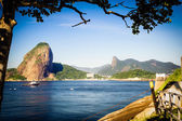 Sugarloaf Mountain — Stockfoto
