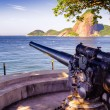 Stock Photo: Cannon at fort