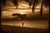Beach at sunset — Stock Photo