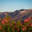 Hollywood sign — Stockfoto #38675505