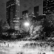 Ice skating at WollmRink — Stock Photo #39738749