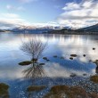 Stock Photo: Lake morning calm 07