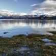 Stock Photo: Lake morning calm 08
