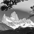 Stock Photo: Fitz Roy Mountain Landscape